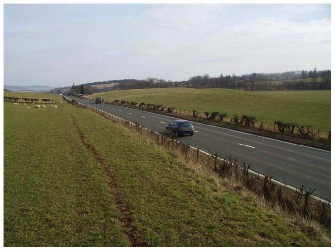 Photograph 5: Typical example of the hawthorn hedge bordering the A68.