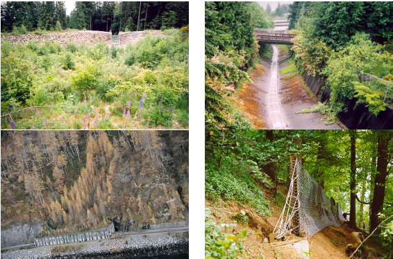 Examples of debris flow hazard reduction techniques