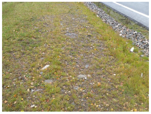 Figure 9 Rocky area preventing grass growth